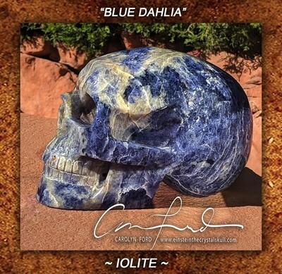 IOLITE,  Einstein the Ancient Crystal  Skull Imprinted,