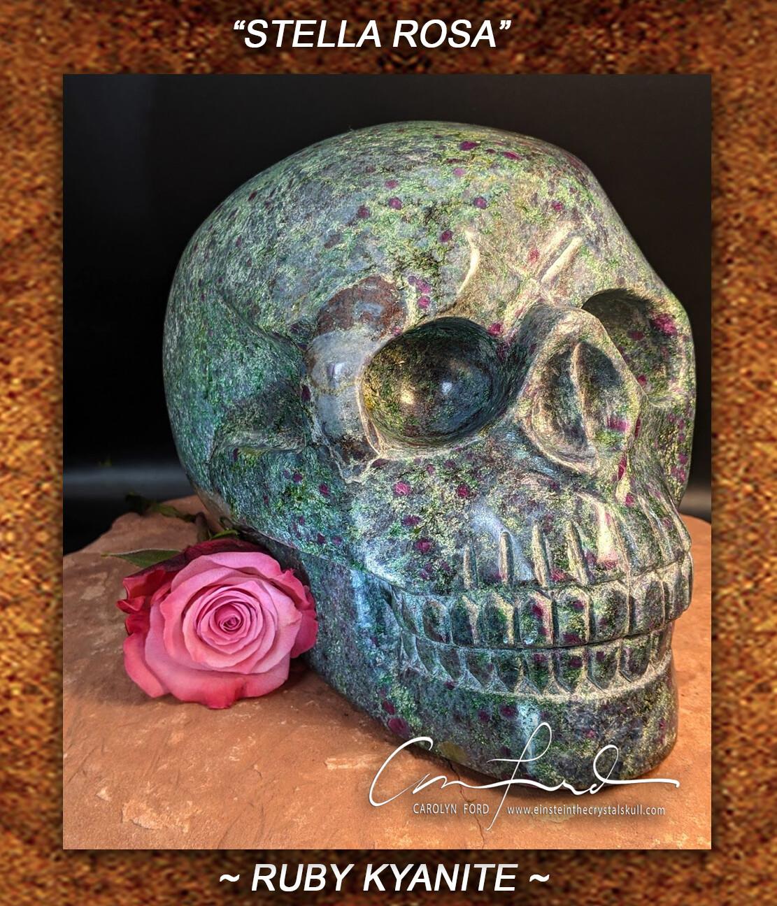 Ruby Fuchsite with Kyanite ~ Einstein Imprinted Skull,