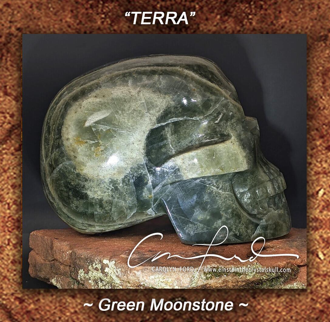 GREEN MOONSTONE  Skull, Einstein Imprinted,  'TERRA'