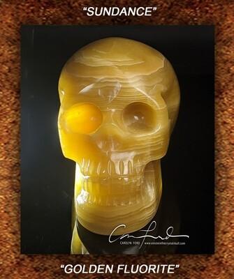 Fluorite (Golden) Einstein Imprinted Skull
