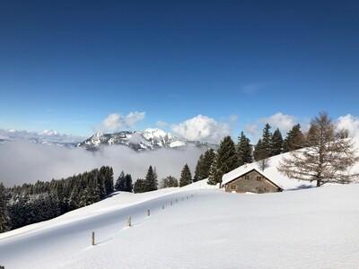 Allgäu Alps: Bavaria Snowshoe Summits