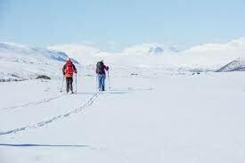 Ski the King's Trail, Arctic Circle, Sweden