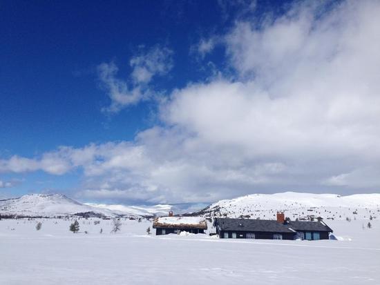 Learn to Cross Country Ski in Venabu, Norway