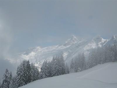 Chamonix Private Snowshoe Full Day