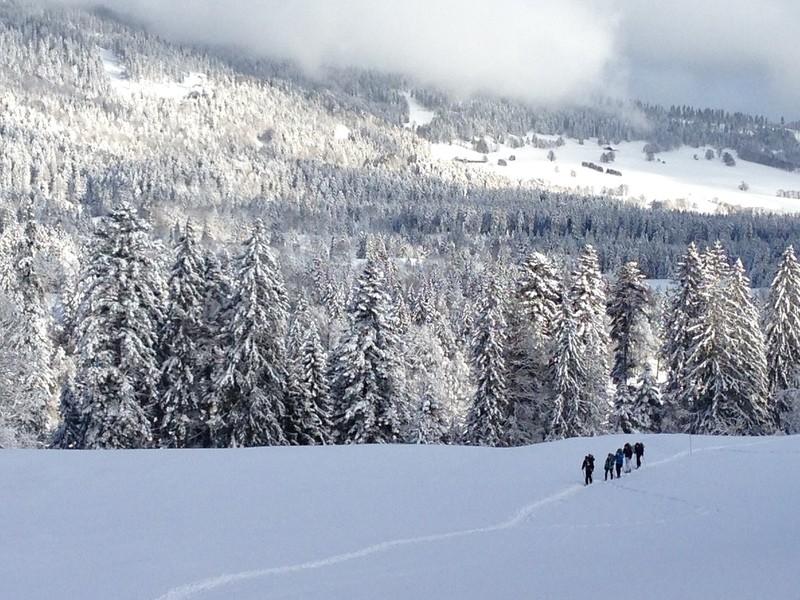 Chamonix Private Snowshoe Half-day