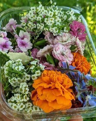 Мікс їстівних квітів