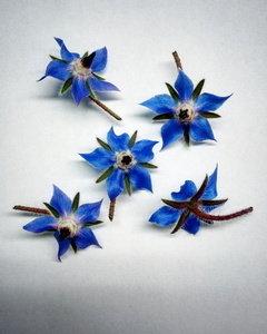 Бораго сині 60шт