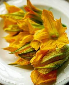 Квіти цукіні 7шт