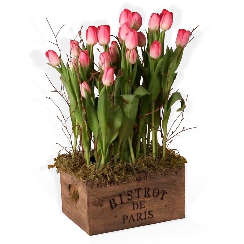 Arreglo Floral Tulipanes   BISTROT