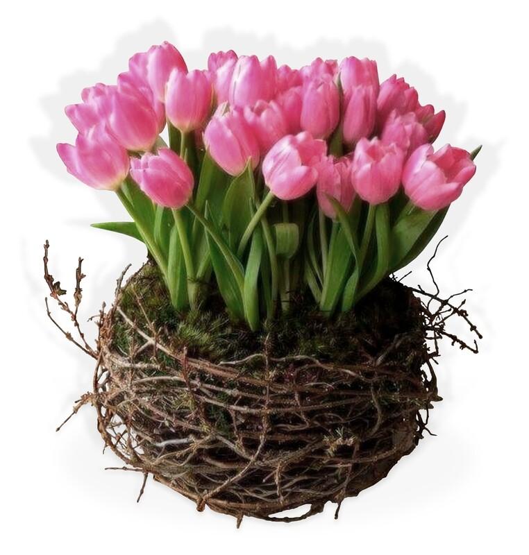 Arreglo Floral Tulipanes   NEST