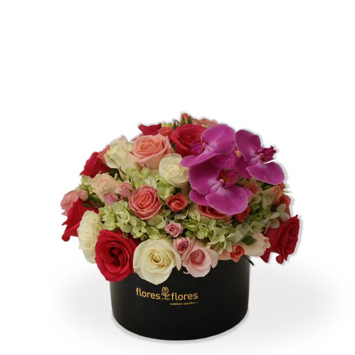 Arreglo Floral Orquídeas, Hortensias y Rosas   LIFE