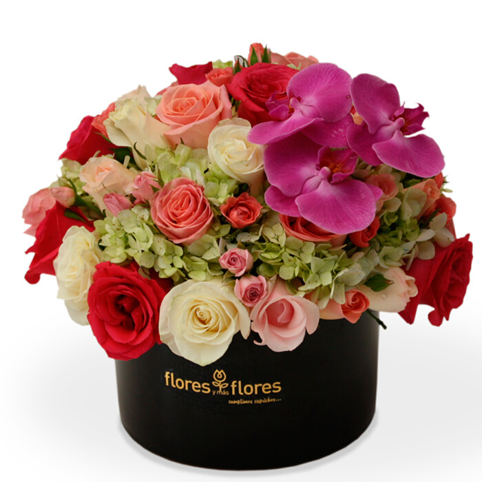 Arreglo Floral Orquídeas, Hortensias y Rosas | LIFE