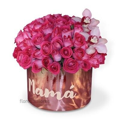 Caja de 100 rosas Premium  | GISELLE F-0116