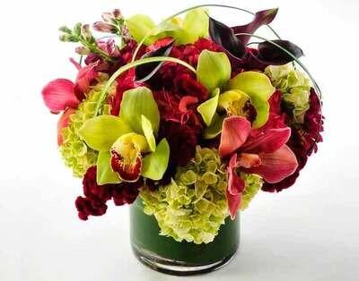 Orquídeas, Hortensias y Callas |  BOLONIA