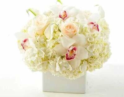 Elegante composición de Orquídeas y Hortensias |  VERONA