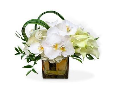 Orquídeas  y Callas con Rosas  I SPOLETO