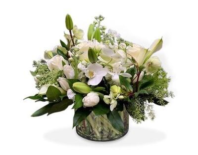 Orquídeas Lilies, Tulipanes y Rosas  I ORVIETO