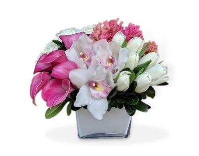 Callas, Lilies y Orquídeas  I NORCIA