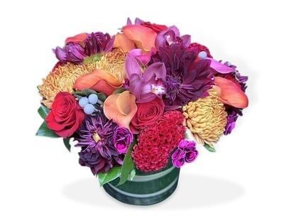 Hortensias, Orquídeas y Rosas  I RICCIONE