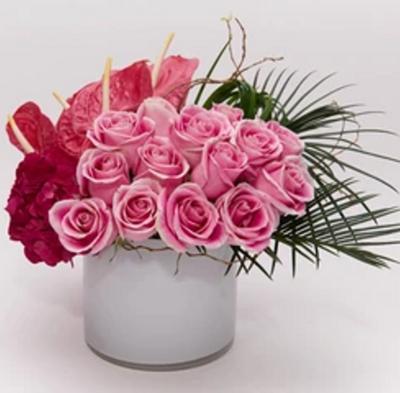 Rosas y Anturios  |  ANCONA