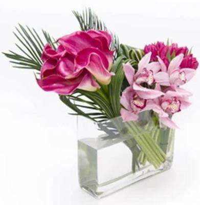 Orquídeas, Tulipanes y Callas  |  BENEDETTO