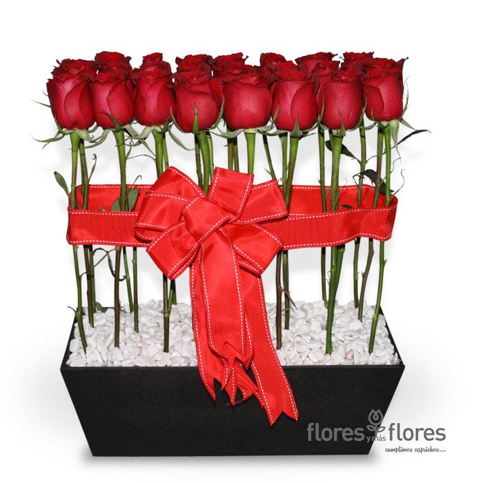 Arreglo Floral de 24 Rosas rojas   SENTIR