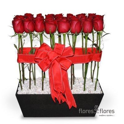 Arreglo Floral de 24 Rosas rojas | SENTIR