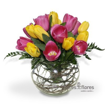 Arreglo Floral de 20 Tulipanes | AZAR