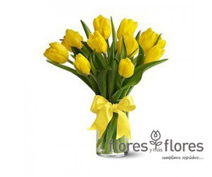 Arreglo Floral Tulipanes | HAPPY