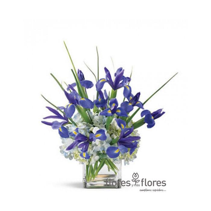 Bouquet de Iris y Hortensias  |  BRILLAR