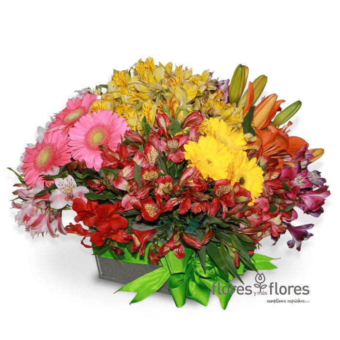 Alstroemerias, Lilies y Gerberas      ANDINA