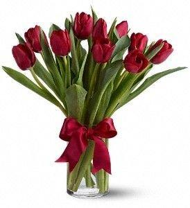 Bouquet de 10 Tulipanes | MELANCOLIE