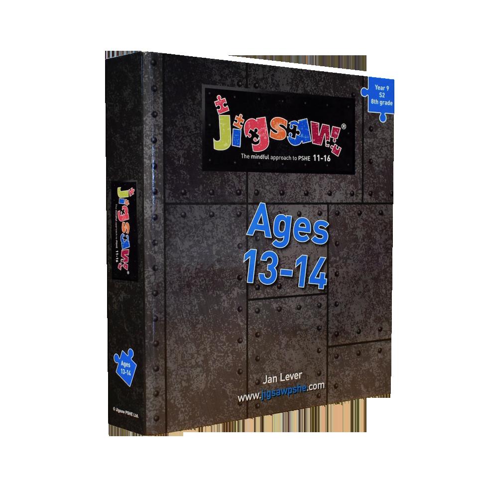 Jigsaw 11-16 Single Set: Ages 13-14