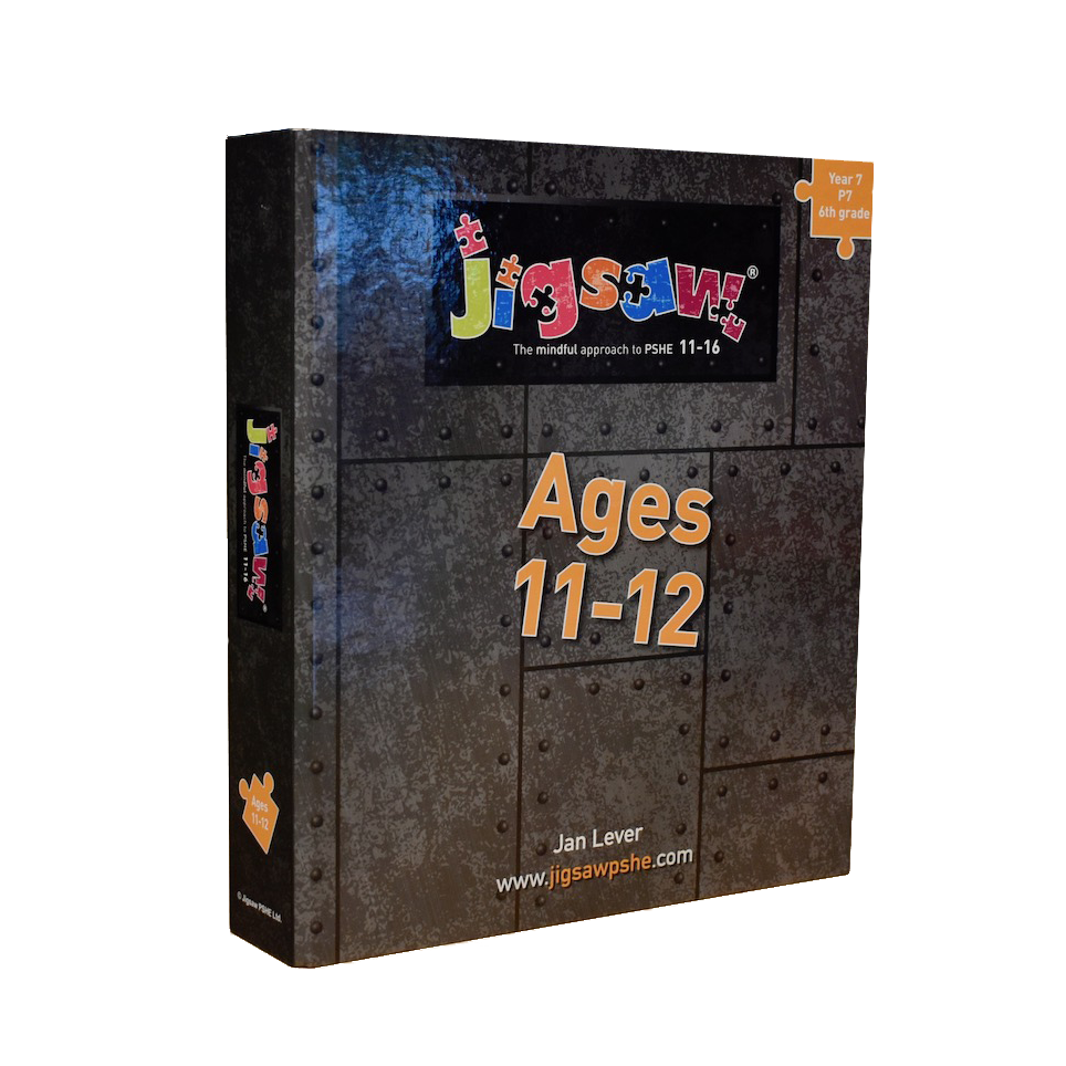 Jigsaw 11-16 Single Set: Ages 11-12