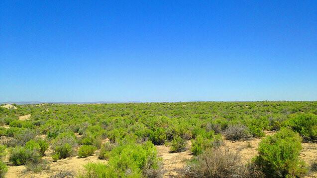 003-043-06 / 4.56 Acres in Eureka County, Nevada
