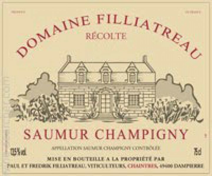 Domaine Filliatreau Saumur Champigny 2017 - Loire Valley, France ( 21434)