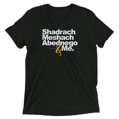 SHADRACH MESHACH ABEDNEGO & ME