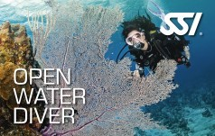 Upgrade to SSI Open Water Diver