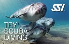 Try Scuba Diving x2