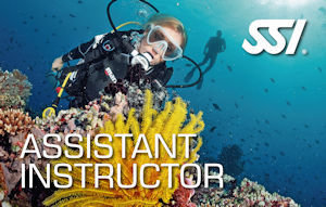 SSI  Assistent Instructor
