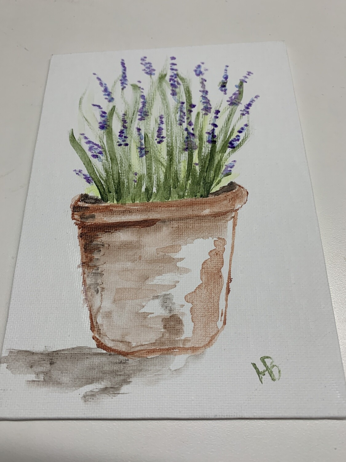5x7 Acrylic Painting, Lavender in a pot