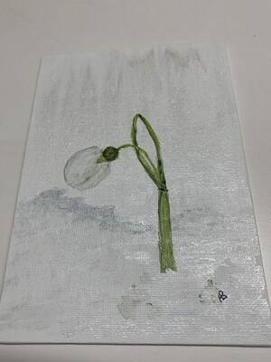 5x7 Acrylic Painting, Snowdrop
