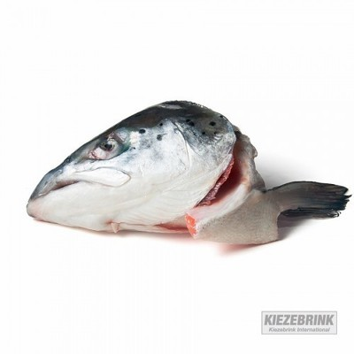 Salmon Heads (Pack of 2)