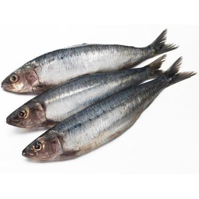 Sardines (1kg)