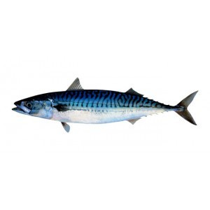 Whole Herring (1kg)