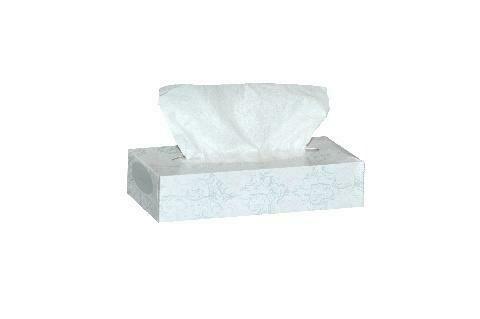 2-Ply Facial Tissues (100 sheets/Box)