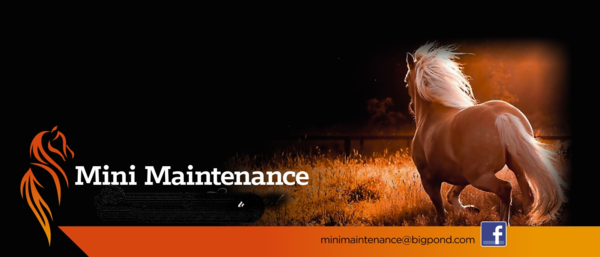 Mini Maintenance Equine Health and Wellbeing
