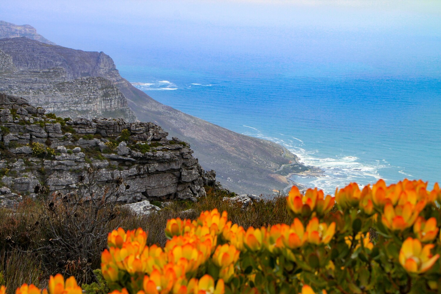 Top of Table Mountain Canvas Print and Lindt Chocolate Truffles