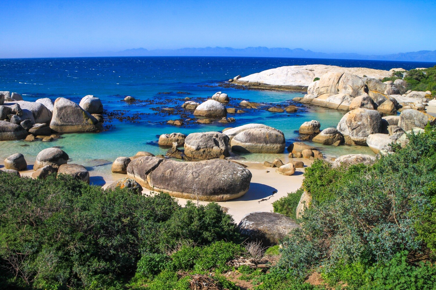 Boulders Beach Canvas Print and Lindt Chocolate Truffles