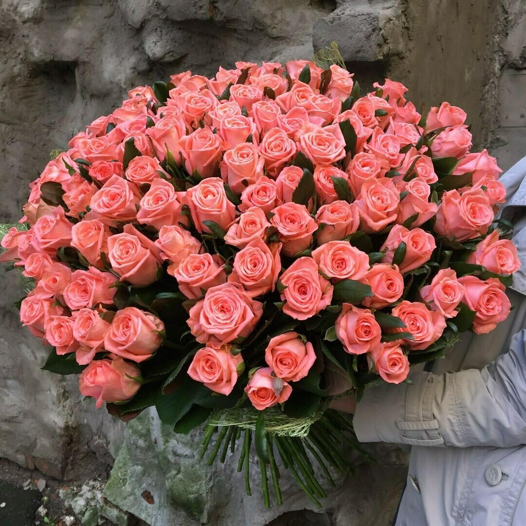 101 роза Карина